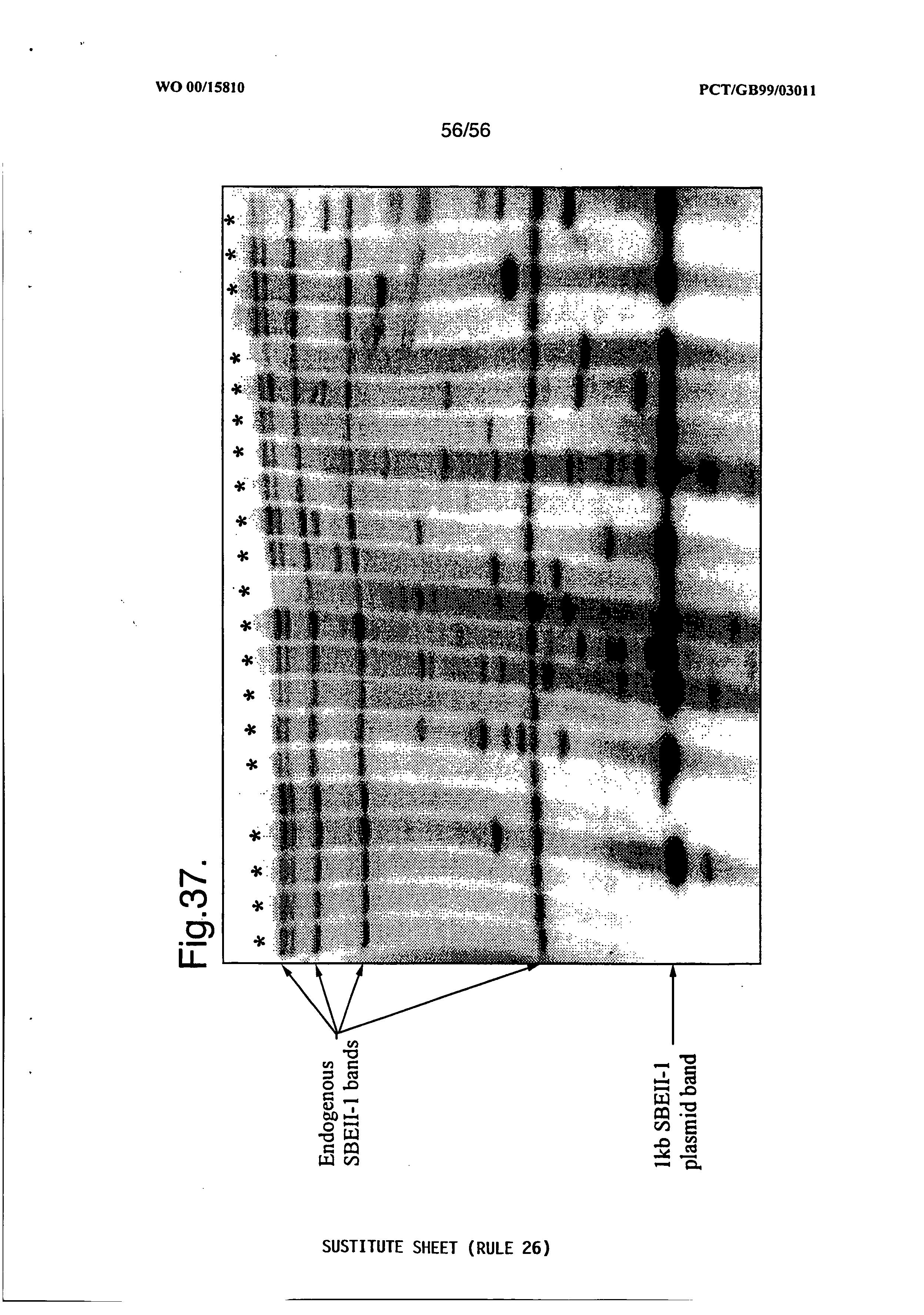 Page 194 AU 767103 B2