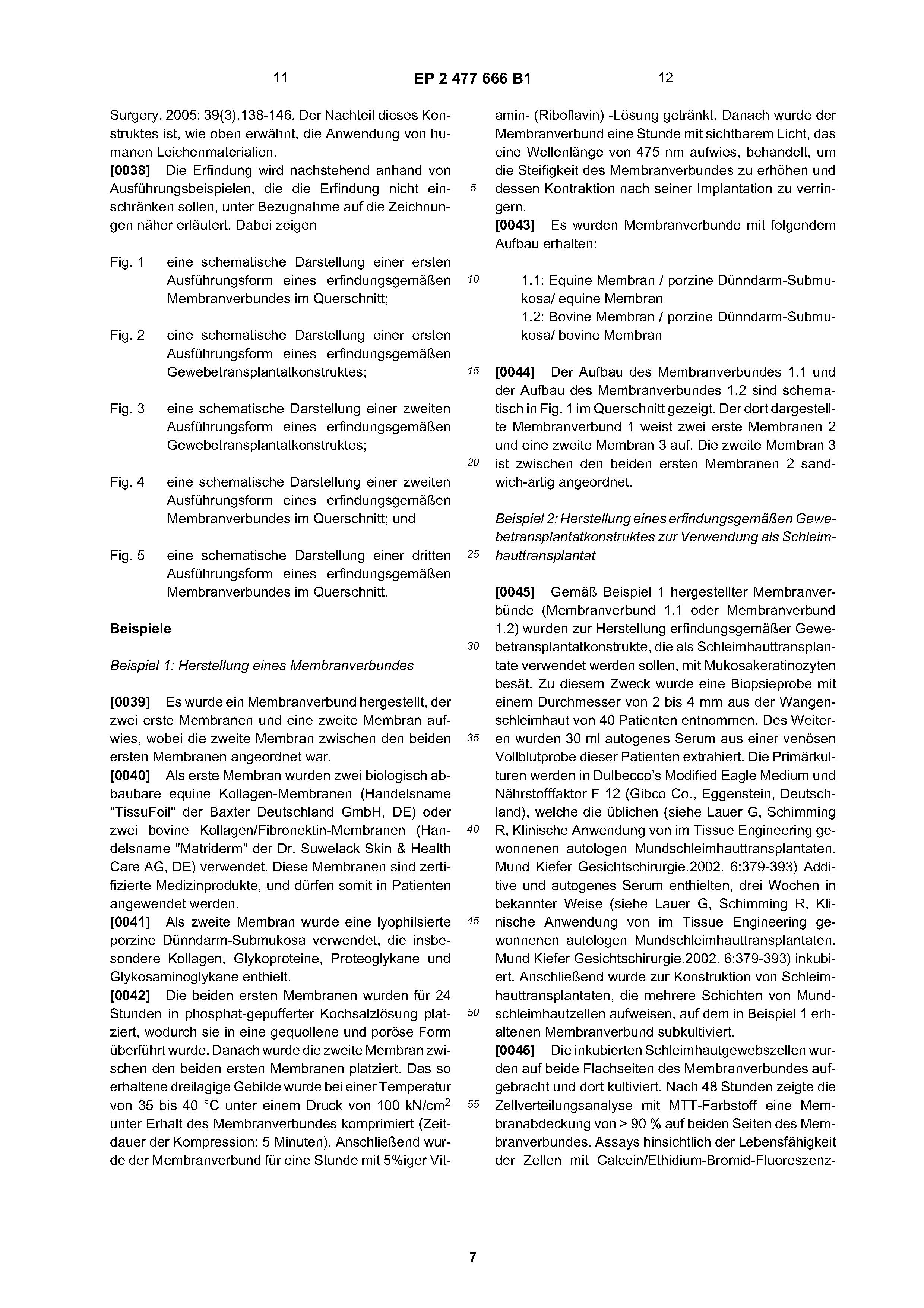 Funky Transport Durch Membranen Powerpoint Arbeitsblatt Antworten ...