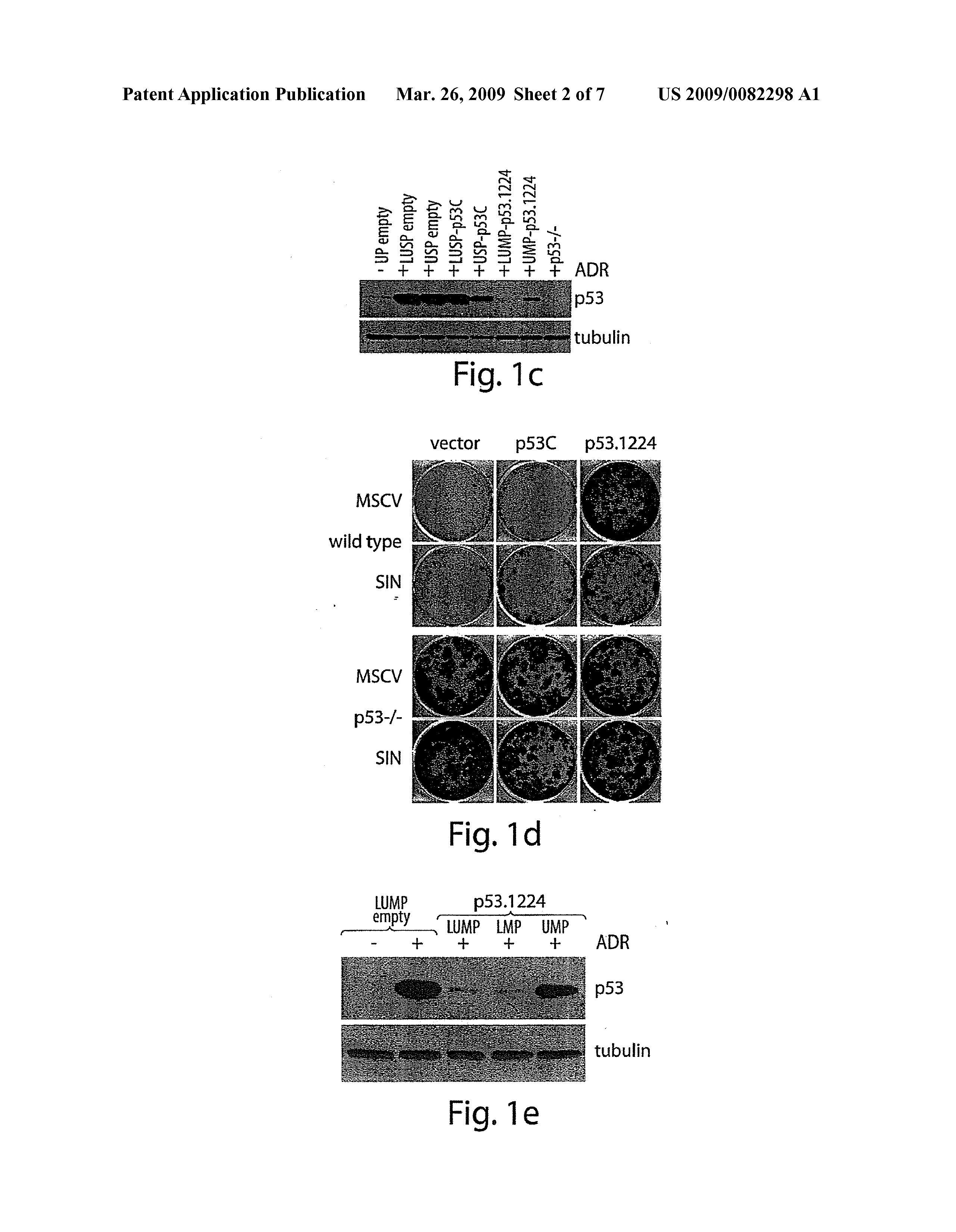 US 2009/0082298 A1 - Methods For Producing Micrornas - The
