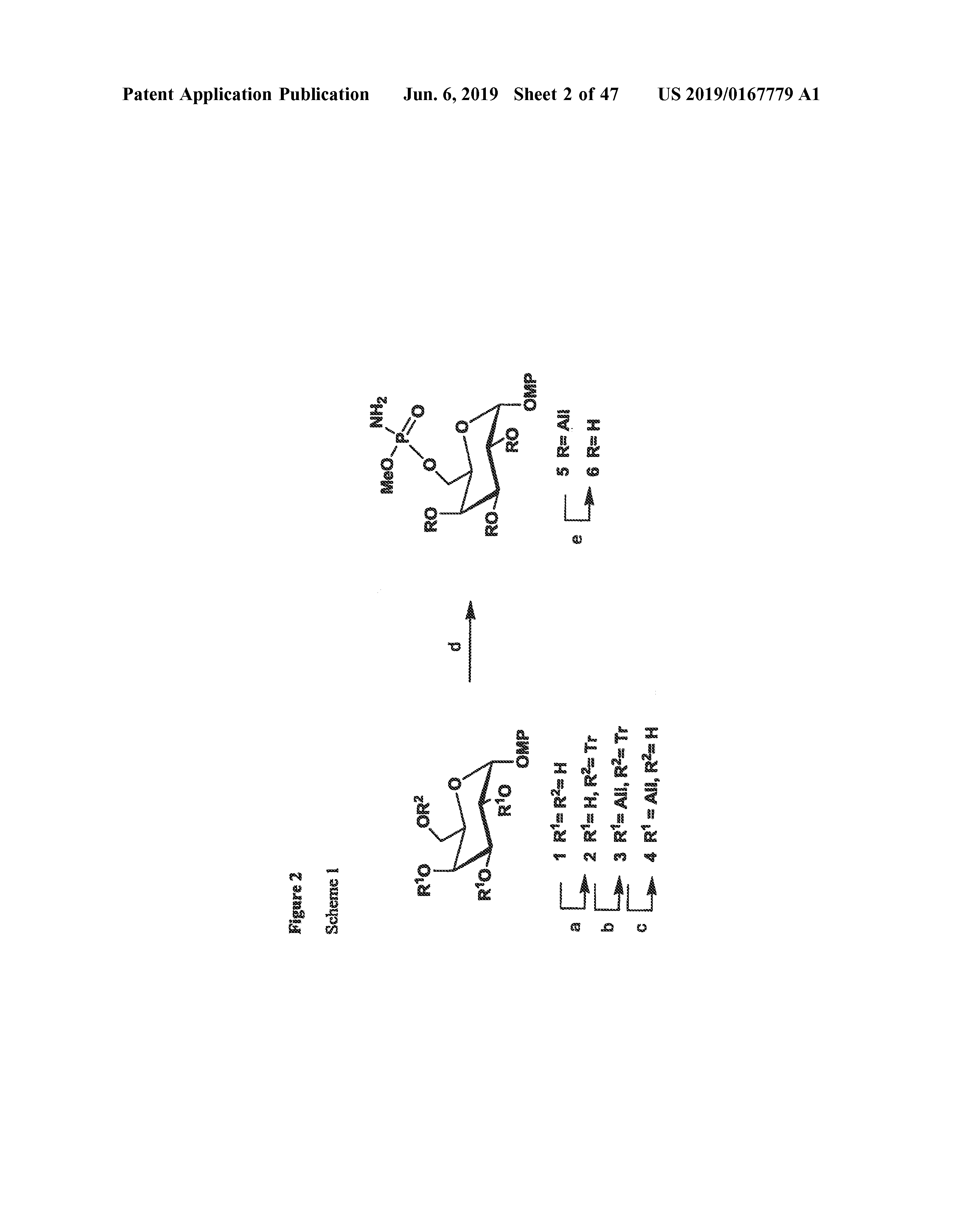 US 2019/0167779 A1 - Synthetic Antigen Constructs Against