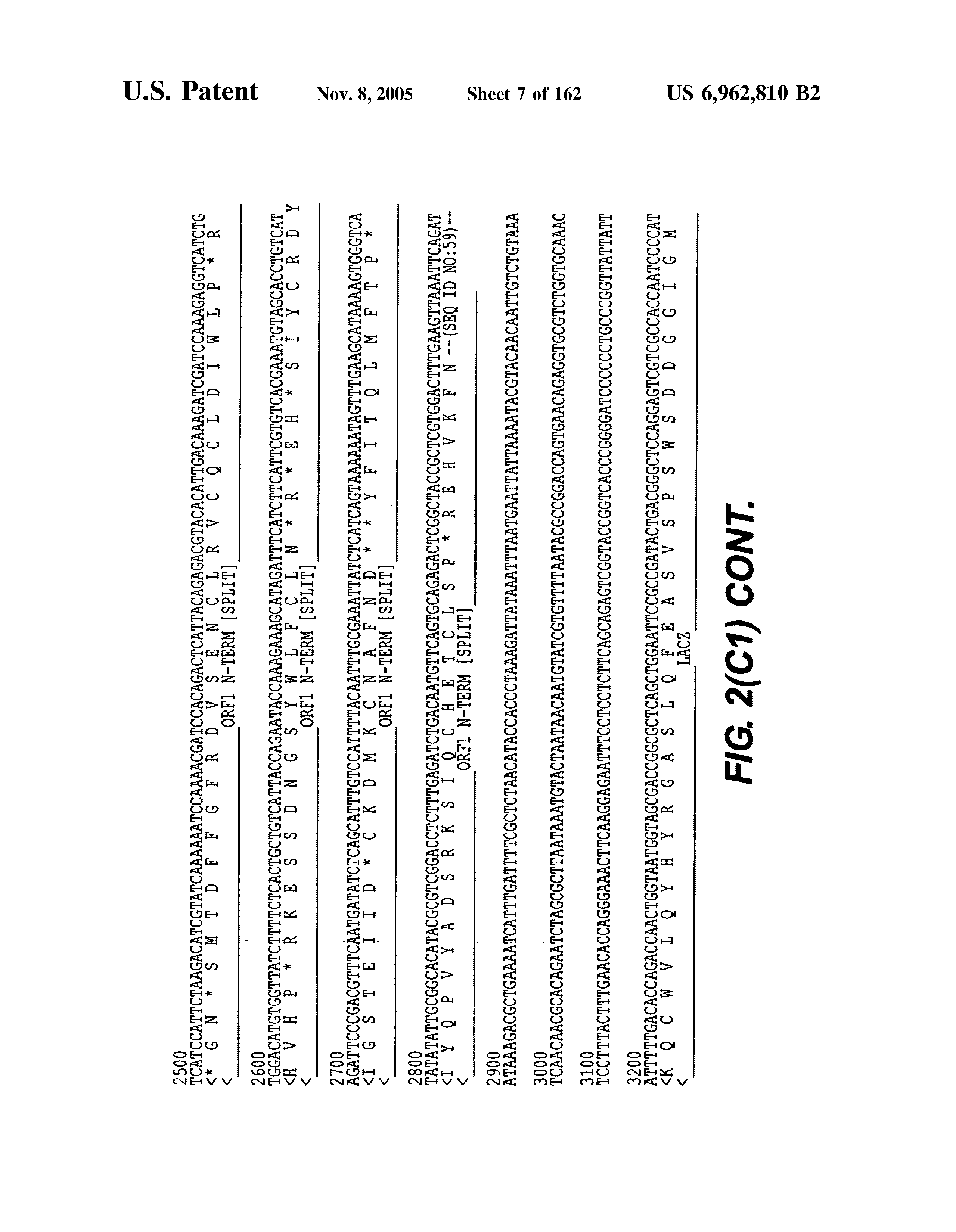 US 6962810 B2 - Methods And Compositions For Transposition