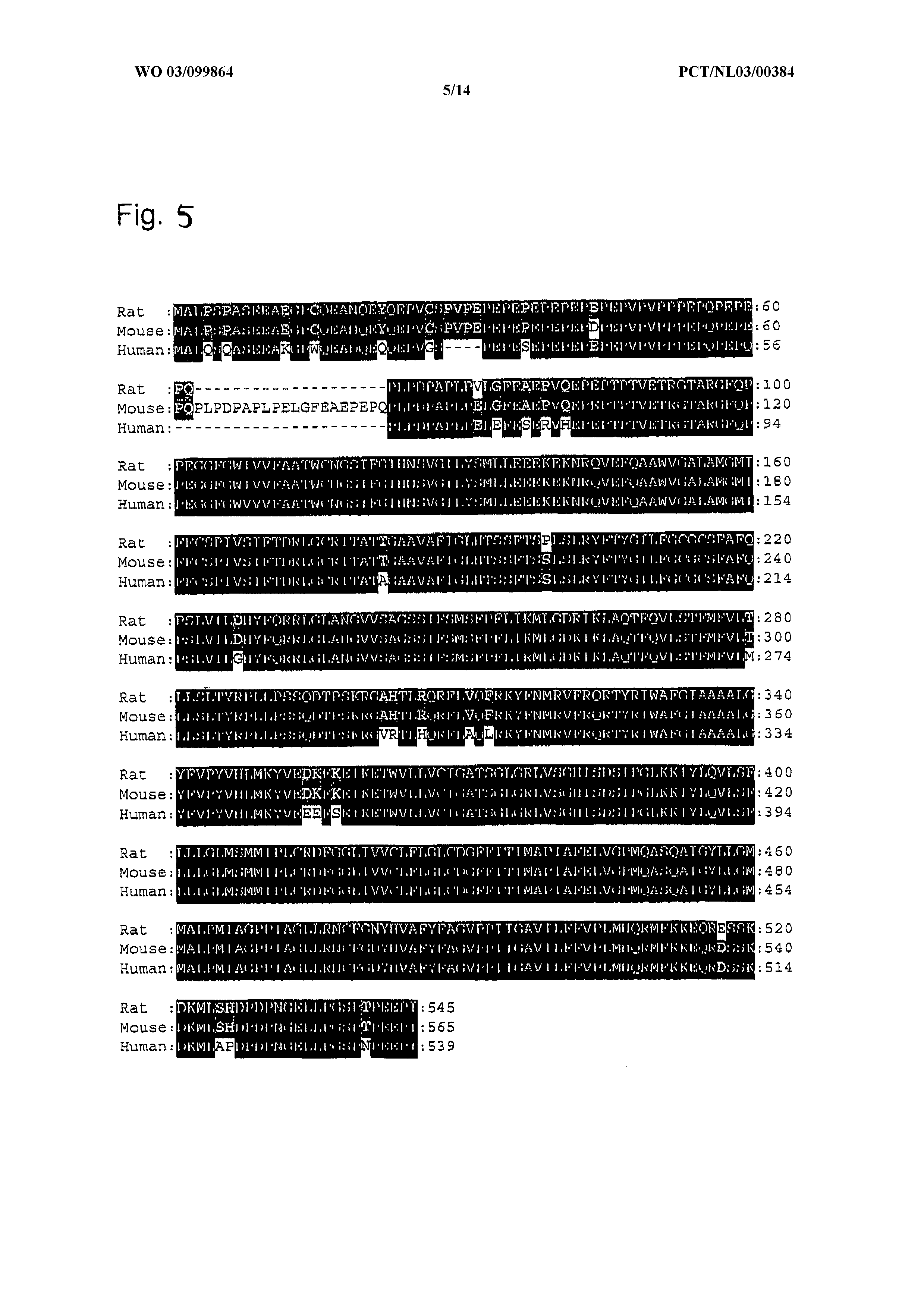 EP 1364962 A1 - Use Of Monocarboxylate Transporter Proteins