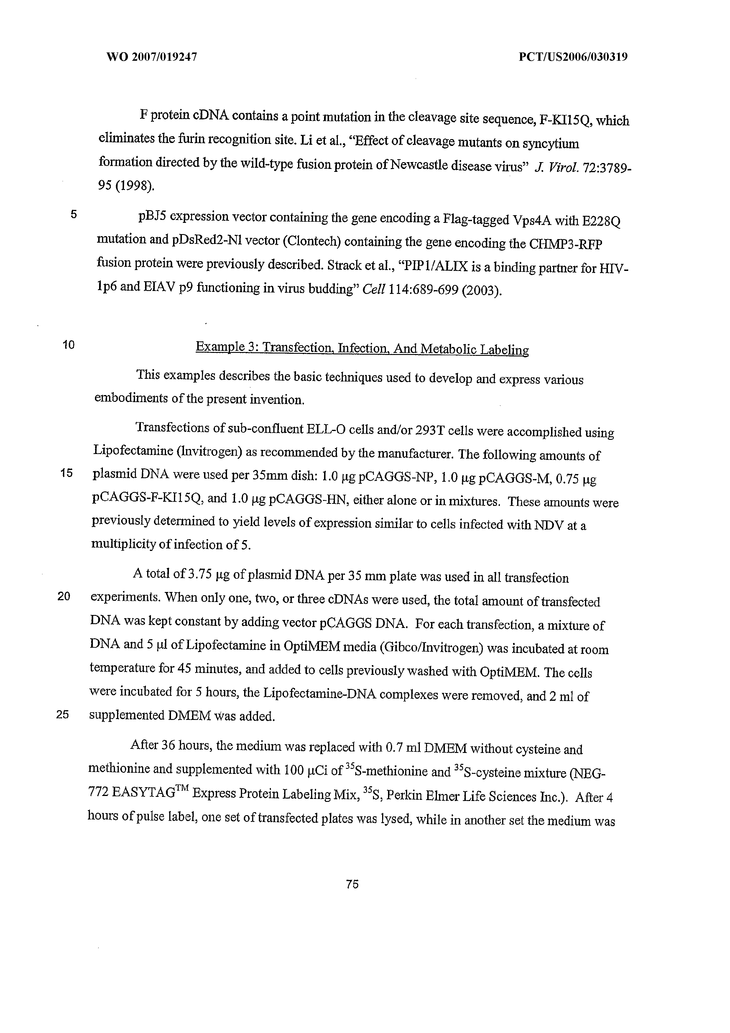 WO 2007/019247 A2 - Virus-like Particles As Vaccines For