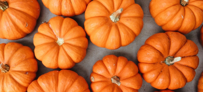 How to Have a THRIVIN' Thanksgiving: A To-Do List