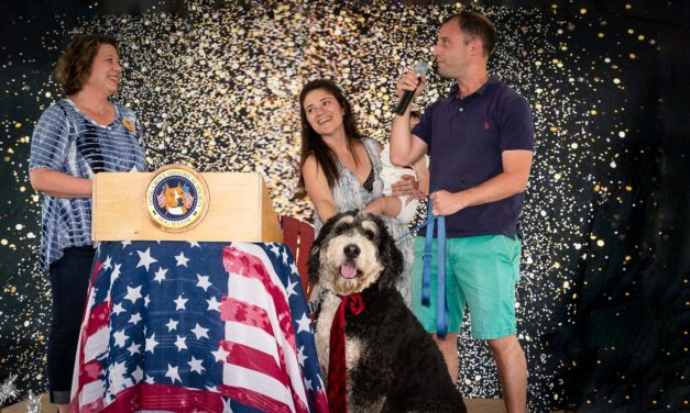 Long Grove Elects First Ever Dog Mayor