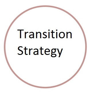 Transition Strategy.png