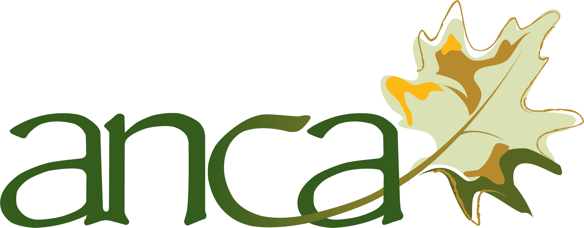 ANCA Logo_no words