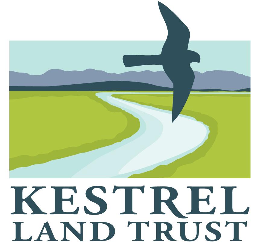 kestrel-logo-landscape-color HI smaller.jpg