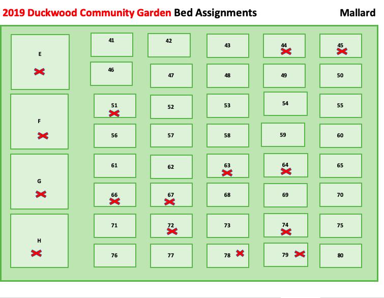 Duckwood 5.7