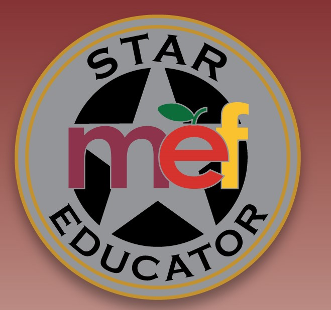 MEF Star Pin.jpg