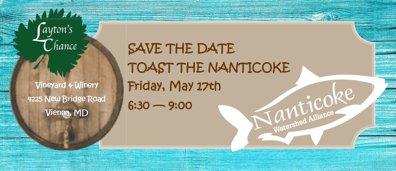 toast save  the date.PNG