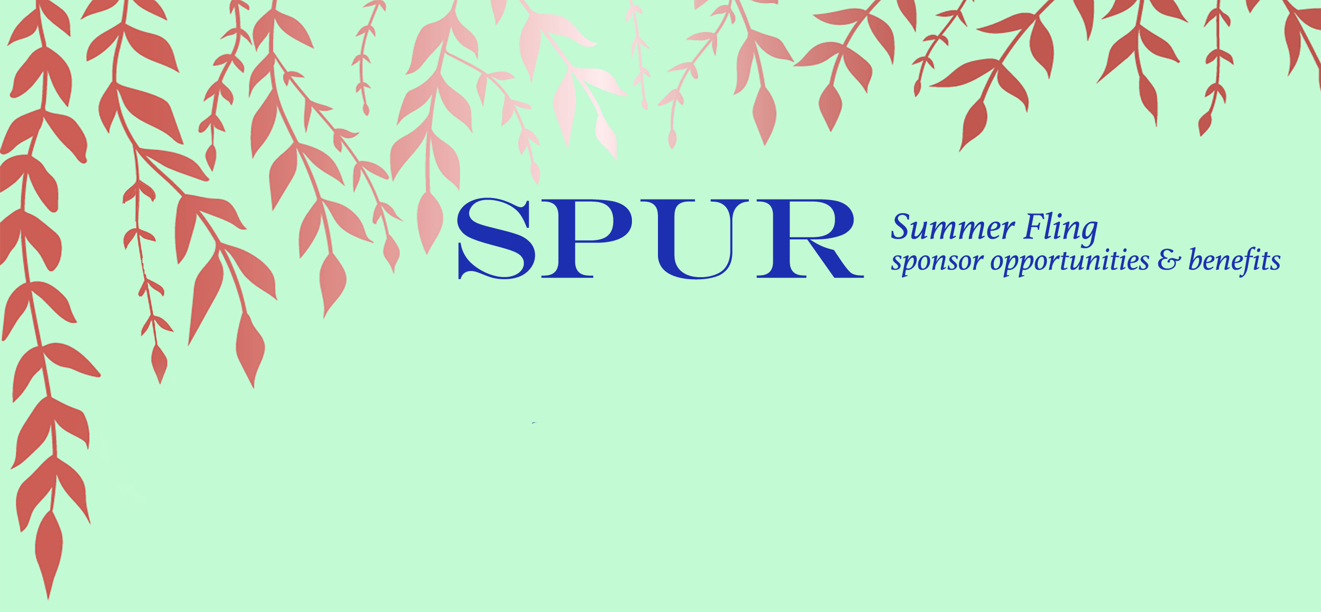 2019 Summer Fling sponsor opportunities & benefits form header.jpg