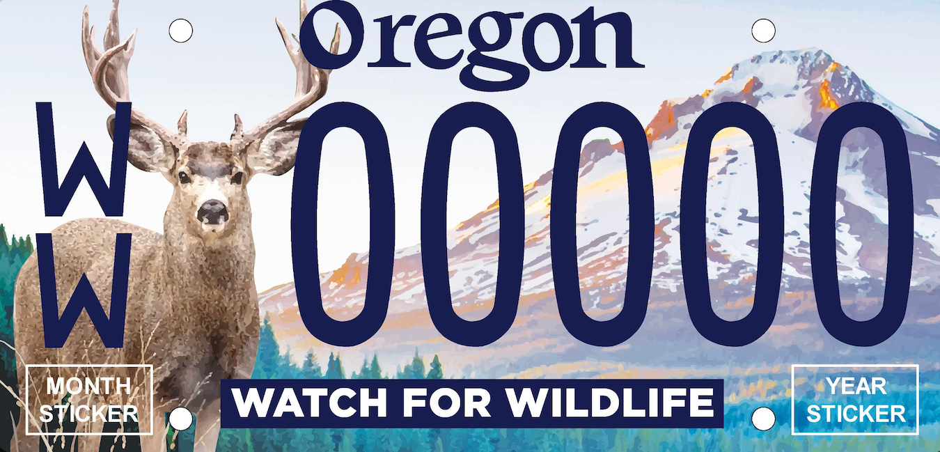Watch for Wildlife plate small.png