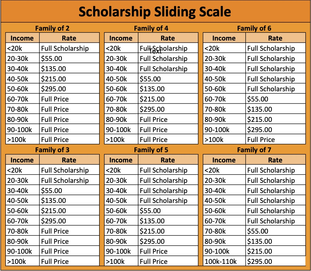 Plugged In DAP Scholarship Sliding Scale - Family Member Participating.jpg