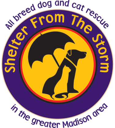 sfts logo png.png