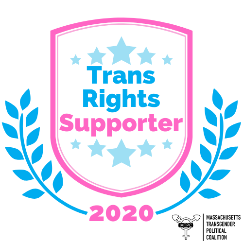 MTPC Trans Rights Supporter Badge_Bronze.png
