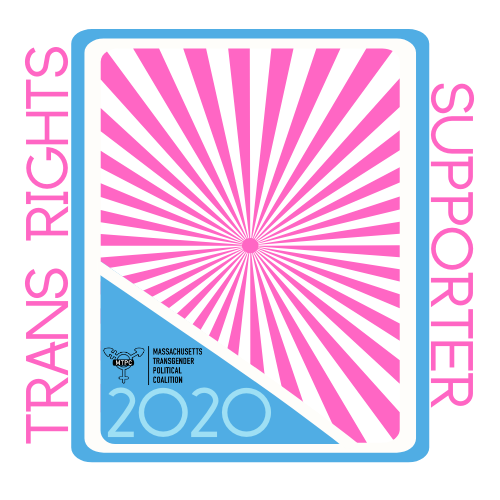 MTPC Trans Rights Supporter Badge_Silver.png