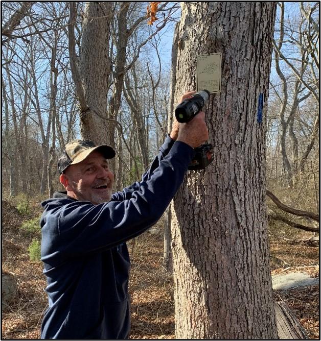 Moore Woodlands Tree Hunt.jpg