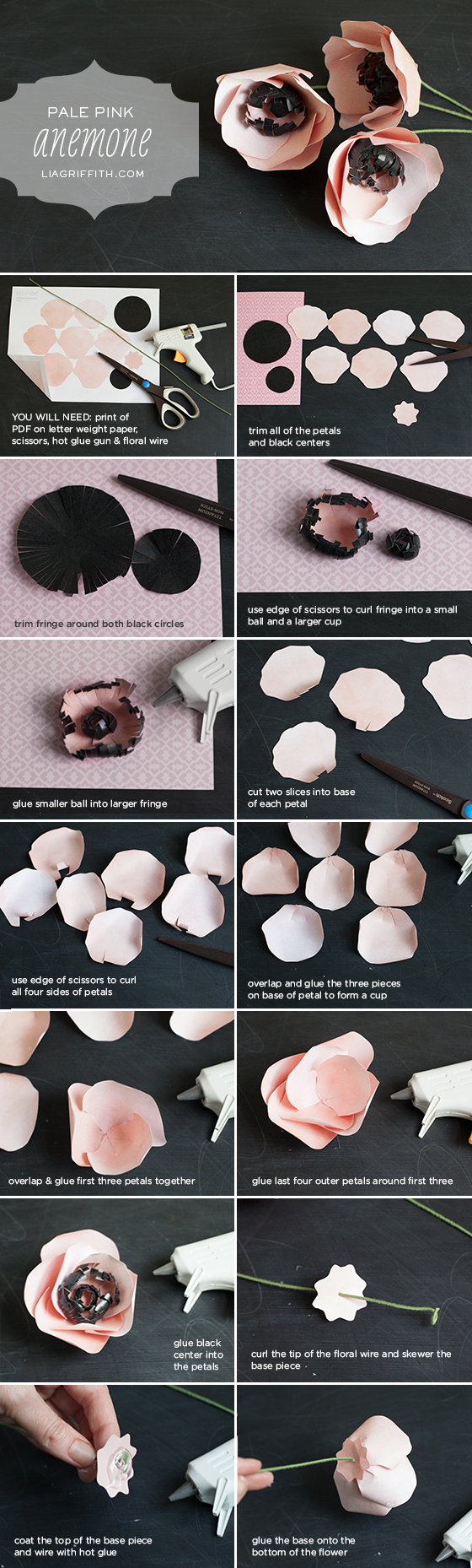 Diy Paper Flower Anemone Lia Griffith