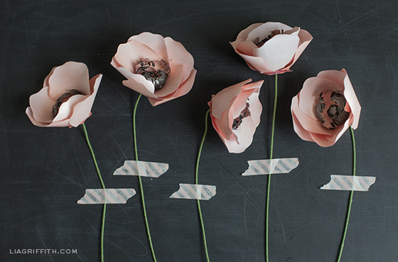 Paper Flower Anemones
