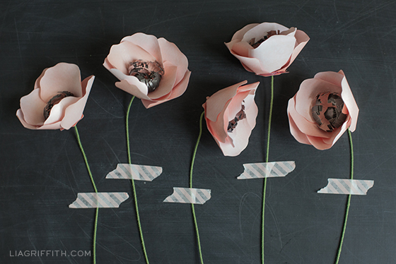 Paper Anemone Flowers