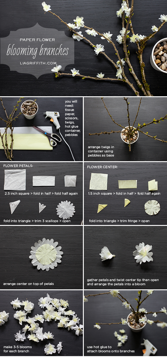 Diy paper flower blooming branches lia griffith tissue paper blooming branches diy blooming branches tutorial mightylinksfo