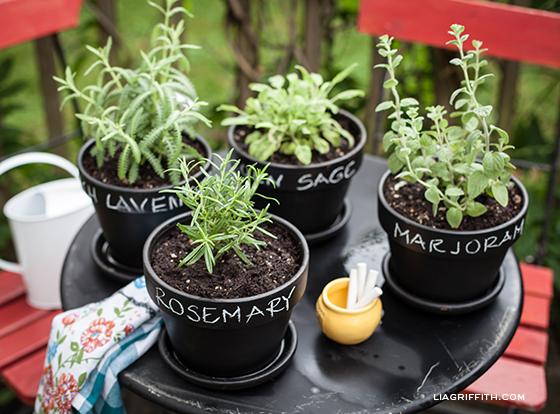 DIY Herb Pots