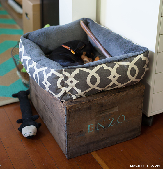 Enzos DIY Dog Bed