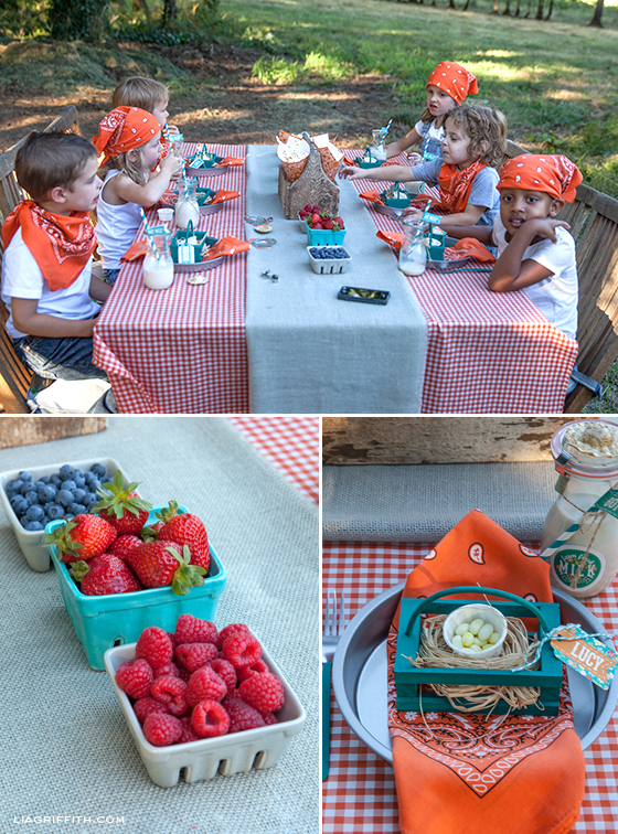 Farm Party Table Details
