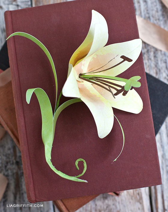 Easter Lily Paper Template