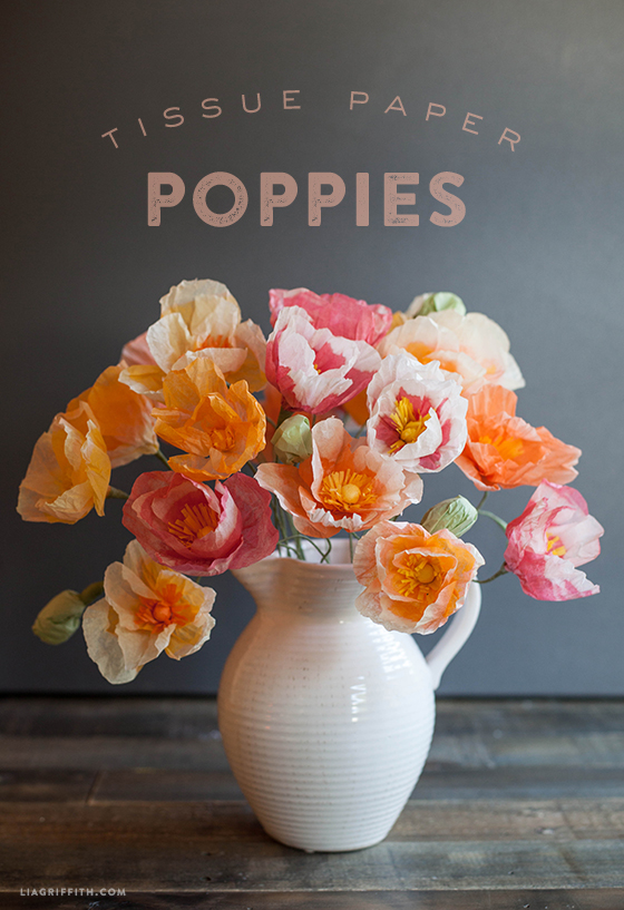 Make these gorgeous tissue paper poppies diytissuepaperpoppies mightylinksfo