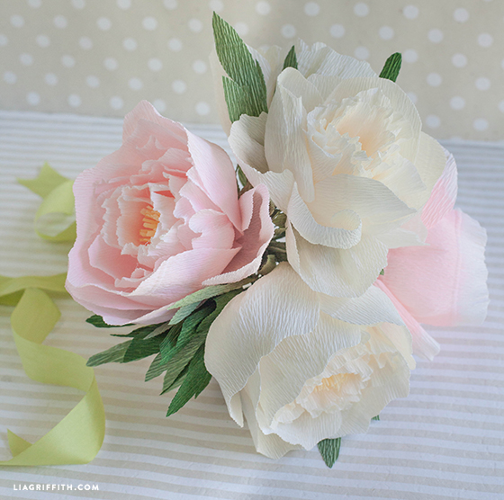 Diy crepe paper peonies in cream blush colors lia griffith mightylinksfo