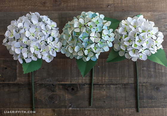 Hydrangea Blooms Made from Paper