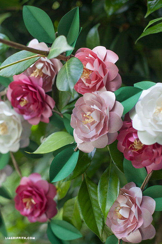 How to make paper Camellia flowers