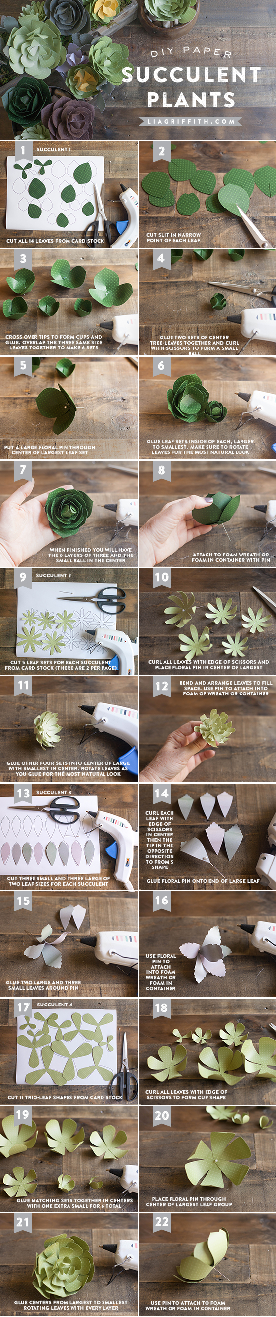 Patterns and Tutorial for Simple Paper Succulents