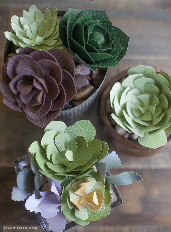 Patterns And Tutorial For Paper Succulents