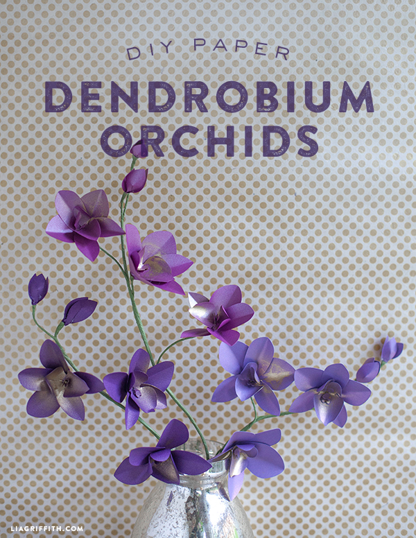 diy frosted paper dendrobium orchids
