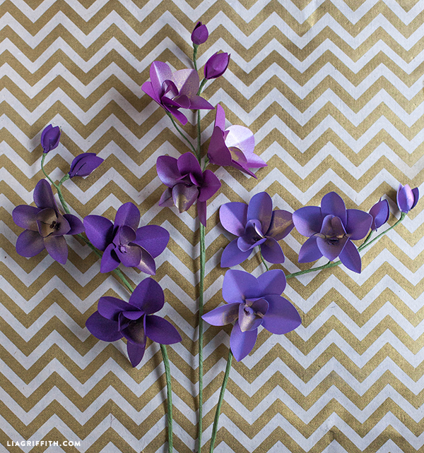 paper orchid Set your store and be able to check inventory and pick up at your local store.