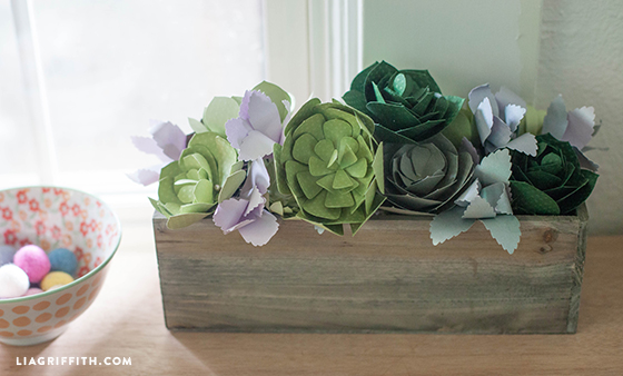 Succulent_Wooden_Box