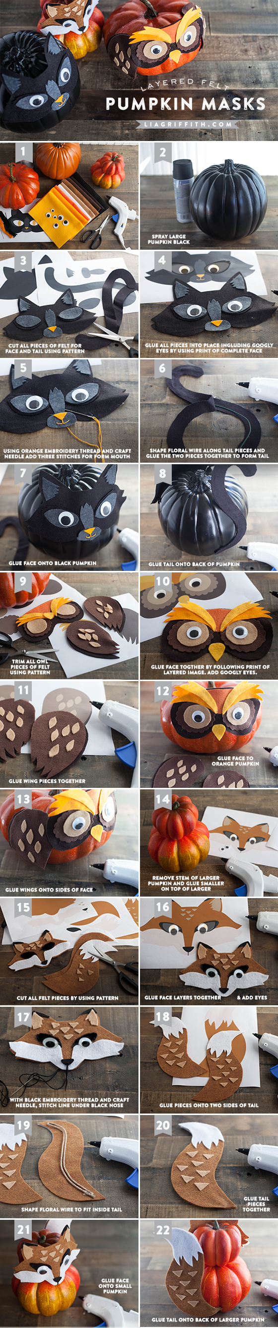 Photo tutorial for animal pumpkin masks for Halloween by Lia Griffith