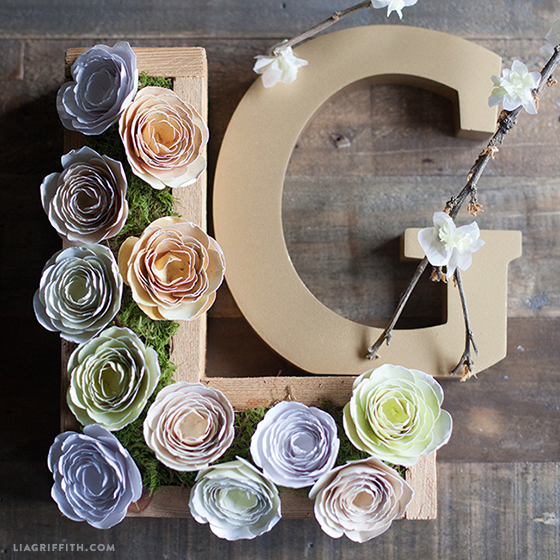 Ranunculus_Flowers