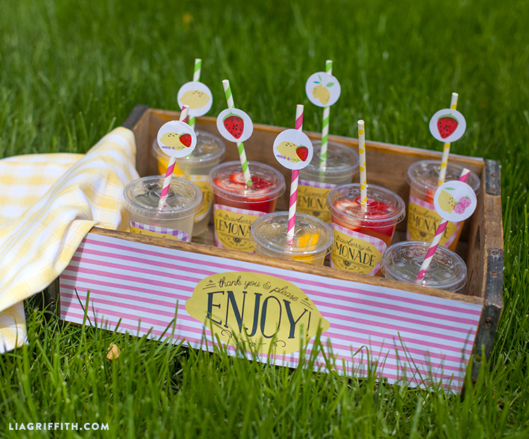 Host Your Own Lemonade Stand Party - Lia Griffith