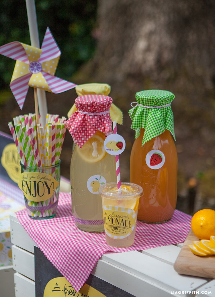 Host Your Own Lemonade Stand Party Lia Griffith