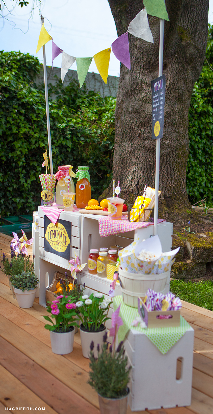 Lemonade Stand For Kids Lia Griffith
