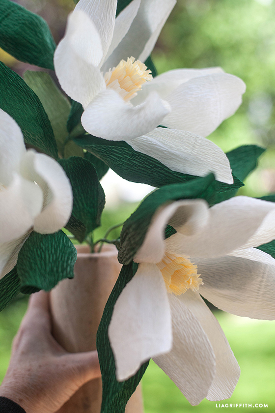Large_Crepe_Paper_Magnolia_Bloom