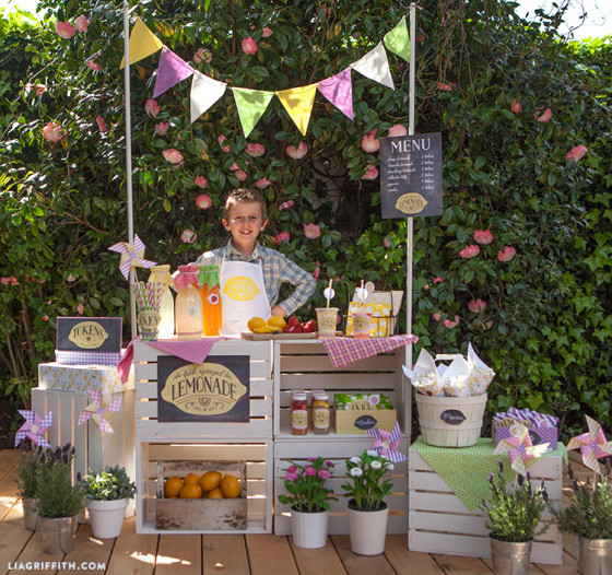 Lemonde_Stand_Party_Shop_Keeper