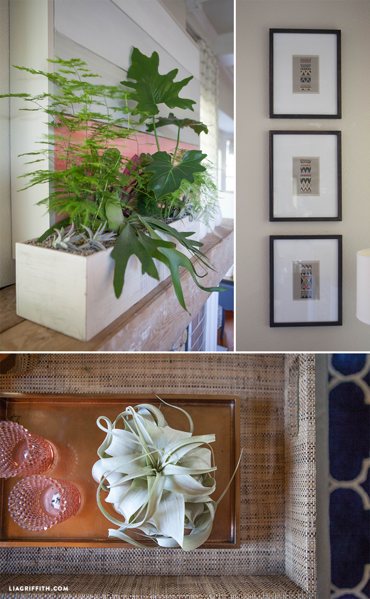 Coral_Living_Room_Plants_Art