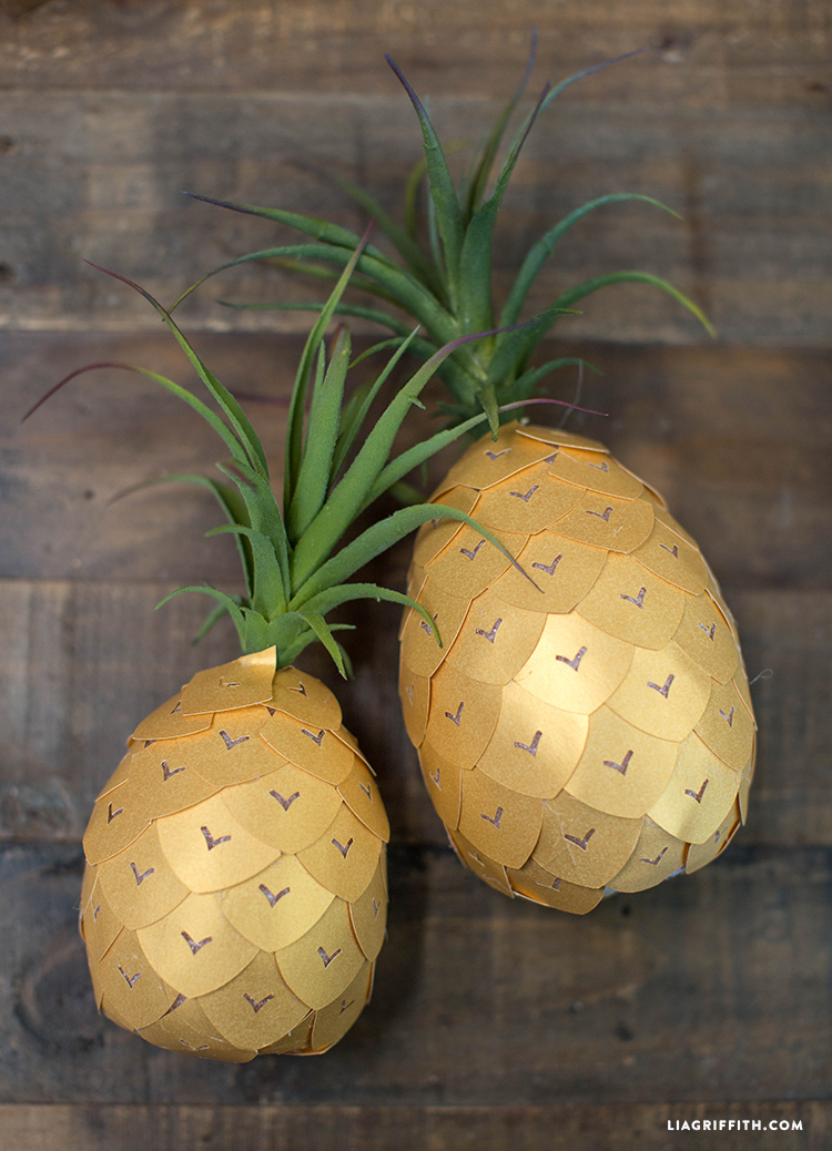 Succulent_Pineapple_DIY