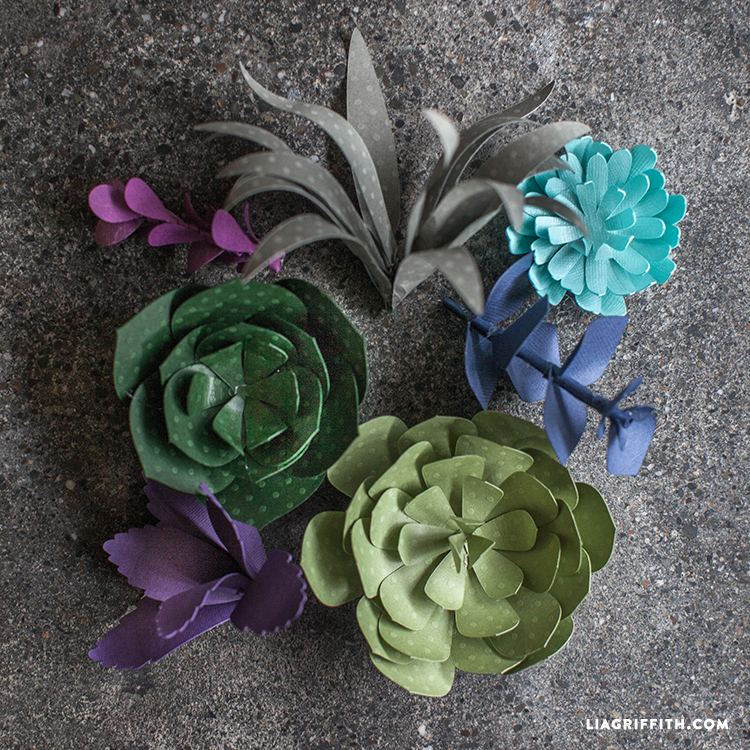 Paper_Succulent_Tutorial_TN
