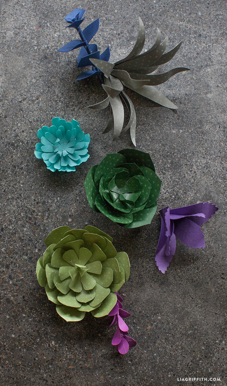 Seven_Paper_Succulents_Tutorial